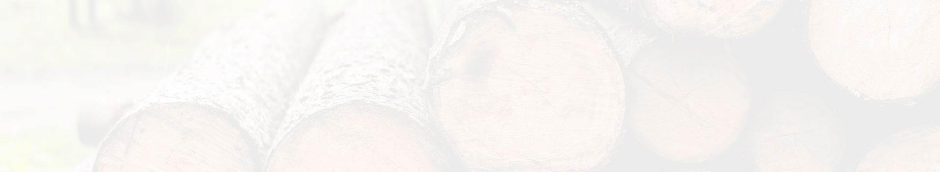 Aufgeschlichtete-Baumstaemme-Hintergrund-Startseite