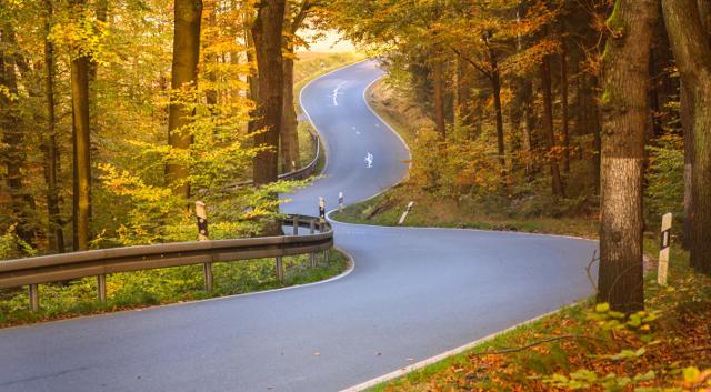 Versand-Straße-durch-Wald-Startseite