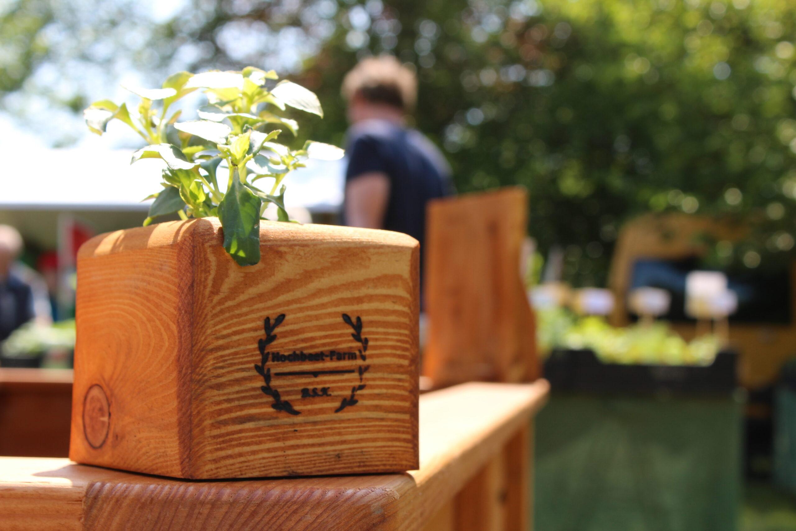 Pflanzkasten, Buckower Gartentag
